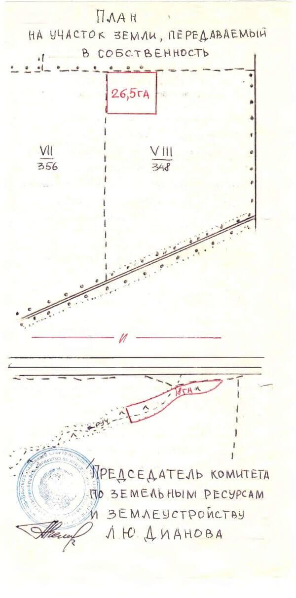 Пример № 3 Землеотводный документ